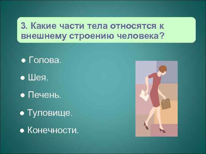 3. Какие части тела относятся к внешнему строению человека?  l  Голова. l