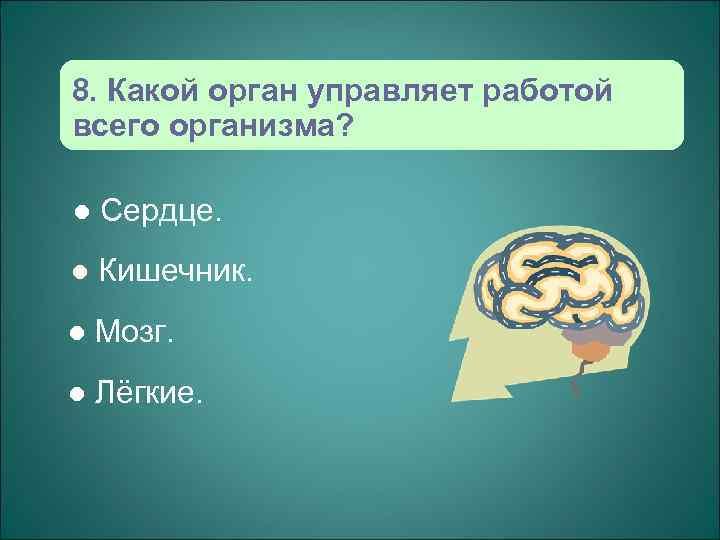 8. Какой орган управляет работой всего организма?  l  Сердце. l  Кишечник.