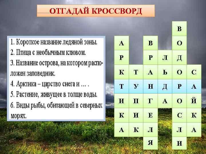ОТГАДАЙ КРОССВОРД     5     В