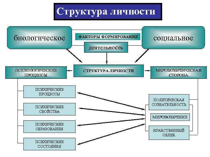 Структура личности биологическое  ФАКТОРЫ ФОРМИРОВАНИЯ