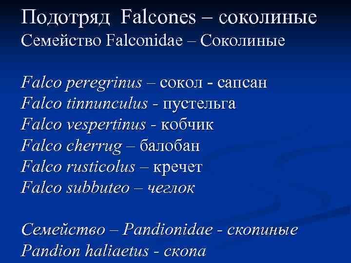 Подотряд Falcones – соколиные Семейство Falconidae – Соколиные Falco peregrinus – сокол - сапсан
