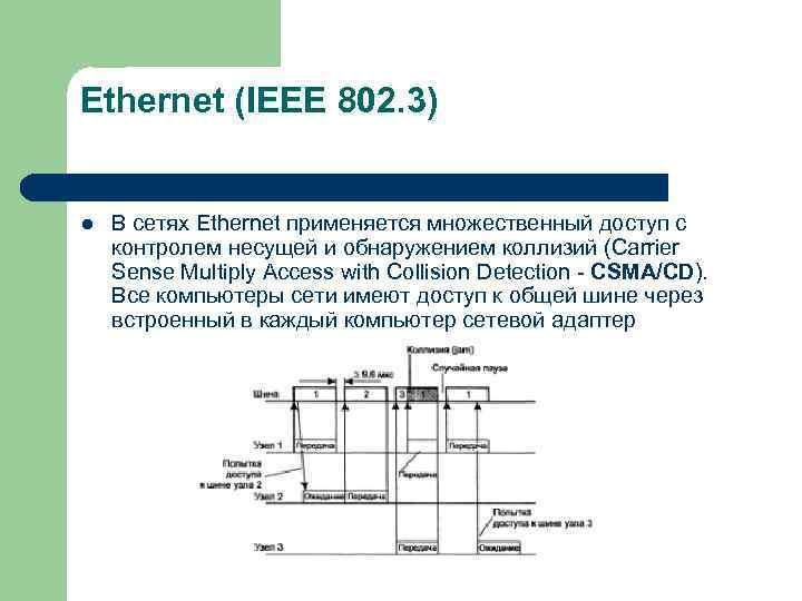 Ethernet (IEEE 802. 3)  l  В сетях Ethernet применяется множественный доступ с