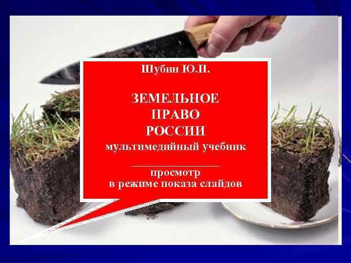 Шубин Ю. П.  ЗЕМЕЛЬНОЕ  ПРАВО  РОССИИ мультимедийный учебник ________