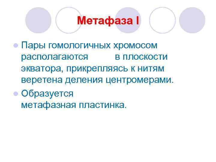Метафаза I l Пары гомологичных хромосом  располагаются в плоскости  экватора,