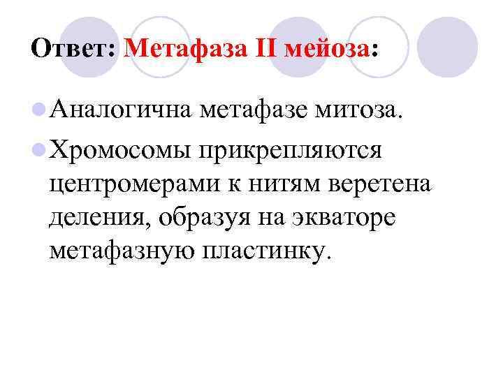 Ответ: Метафаза II мейоза:  l Аналогична метафазе митоза. l Хромосомы прикрепляются  центромерами