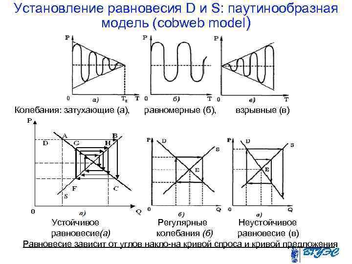 Установление равновесия D и S: паутинообразная   модель (cobweb model) Колебания: затухающие (а),