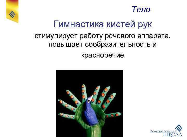 Тело Гимнастика кистей рук стимулирует работу речевого аппарата, повышает