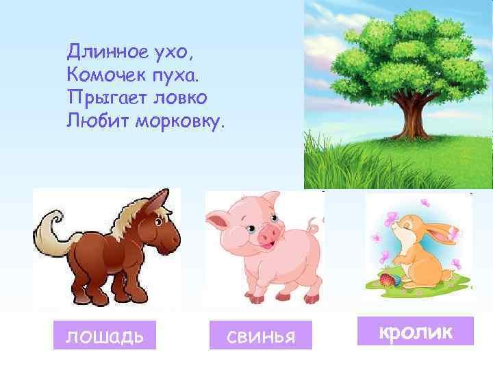 Длинное ухо, Комочек пуха. Прыгает ловко Любит морковку. лошадь  свинья  кролик