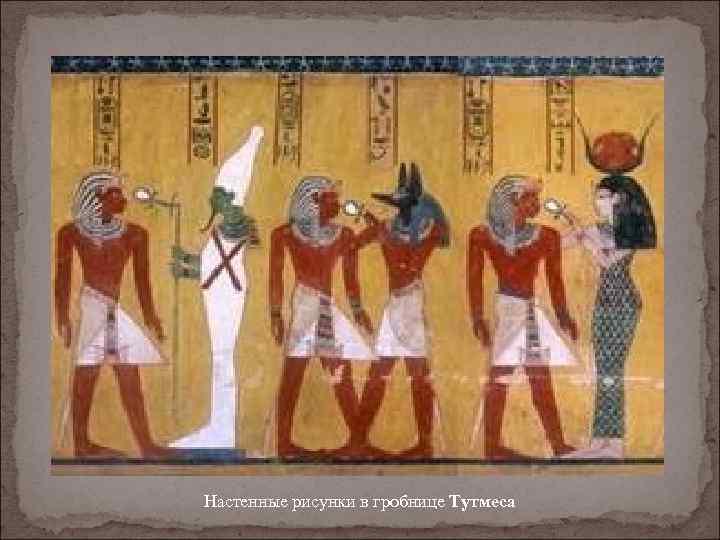 Настенные рисунки в гробнице Тутмеса