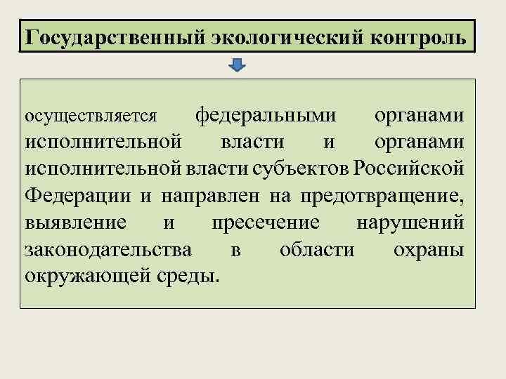 Государственный экологический контроль осуществляется федеральными органами исполнительной власти субъектов Российской Федерации и направлен на