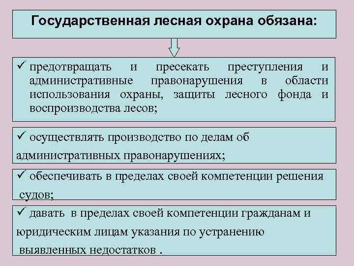 Государственная лесная охрана обязана: ü предотвращать и пресекать преступления и административные правонарушения в области