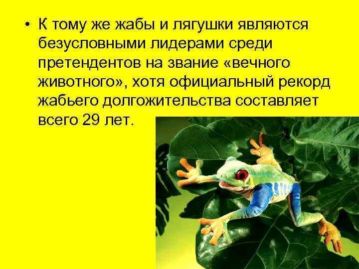 • К тому же жабы и лягушки являются  безусловными лидерами среди