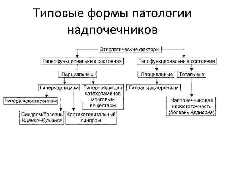 Типовые формы патологии надпочечников