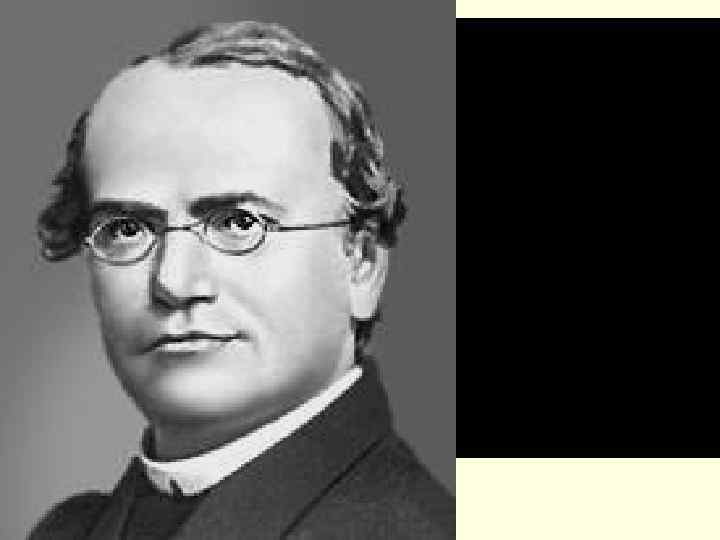 Ме ндель Грегор Иоганн 1822— 1884  Австрийский естествоиспытатель,  основоположник учения о наследственности.
