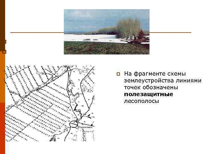 p p  p  На фрагменте схемы   землеустройства линиями