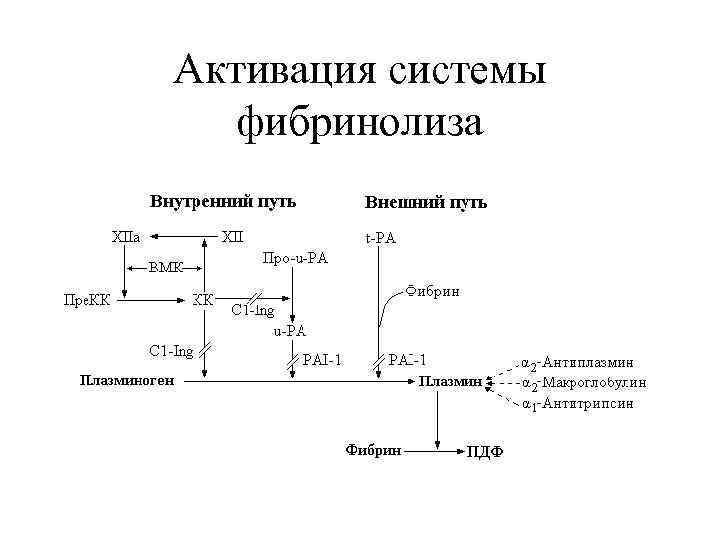 Активация системы  фибринолиза