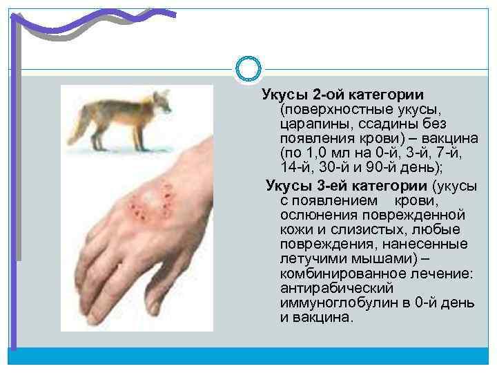 Укусы 2 -ой категории  (поверхностные укусы,  царапины, ссадины без  появления крови)