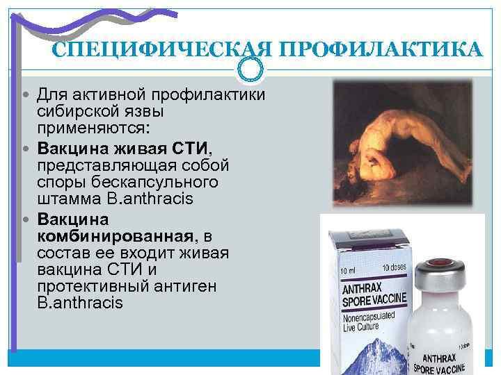 СПЕЦИФИЧЕСКАЯ ПРОФИЛАКТИКА  Для активной профилактики  сибирской язвы  применяются: