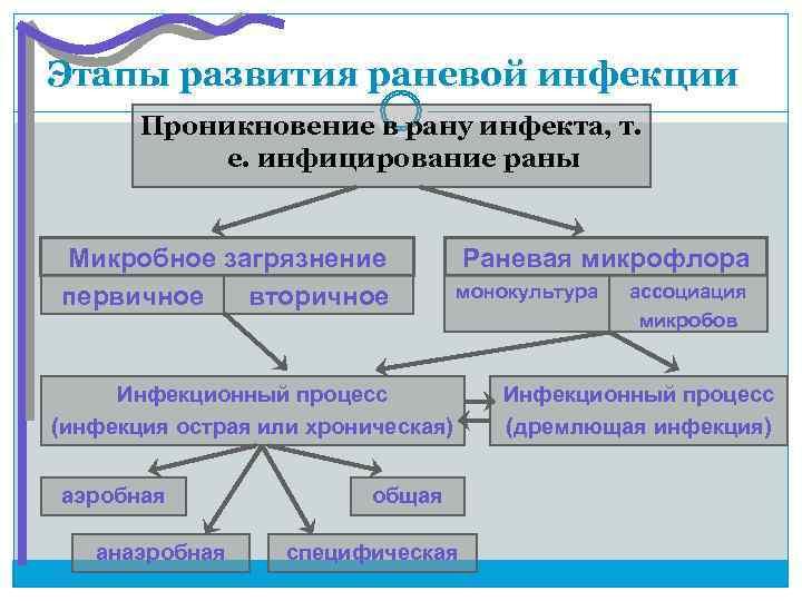 Этапы развития раневой инфекции  Проникновение в рану инфекта, т.   е. инфицирование