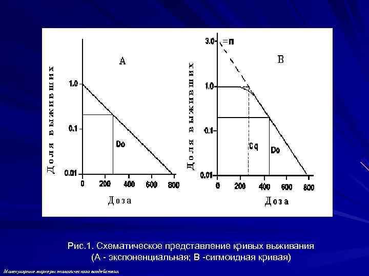 Рис. 1. Схематическое представление кривых выживания