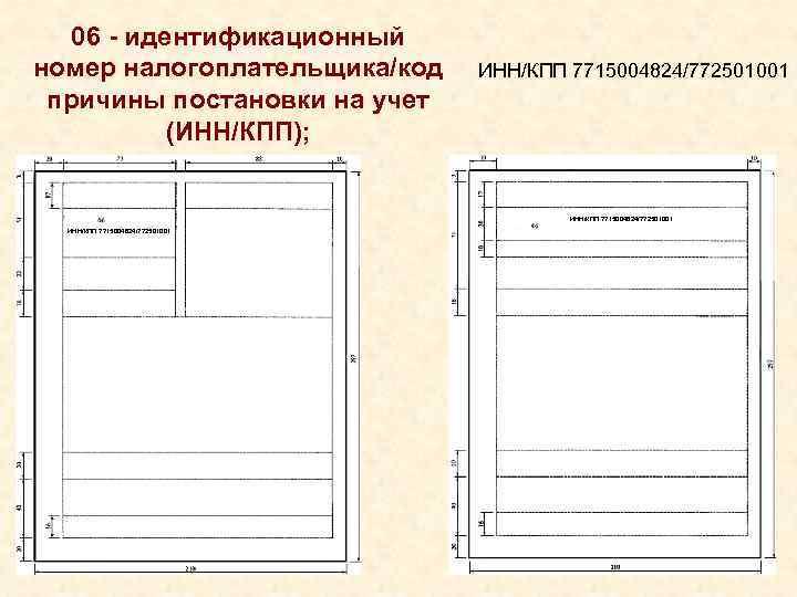 06 - идентификационный номер налогоплательщика/код ИНН/КПП 7715004824/772501001 причины постановки на учет
