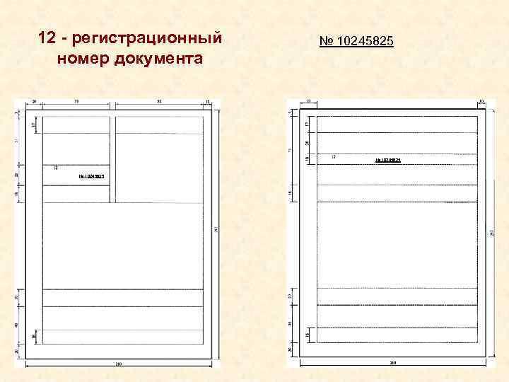 12 - регистрационный  № 10245825  номер документа
