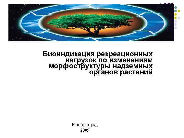 Биоиндикация рекреационных нагрузок по изменениям морфоструктуры надземных  органов растений  Калининград  2009