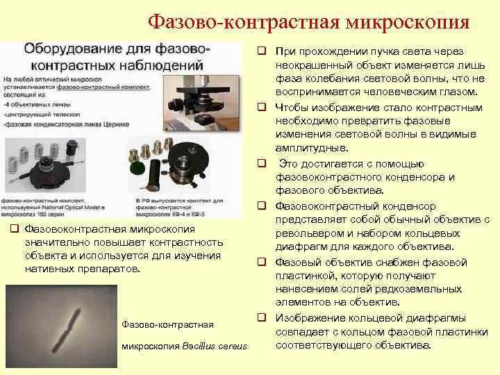 Фазово контрастная микроскопия    q При прохождении пучка