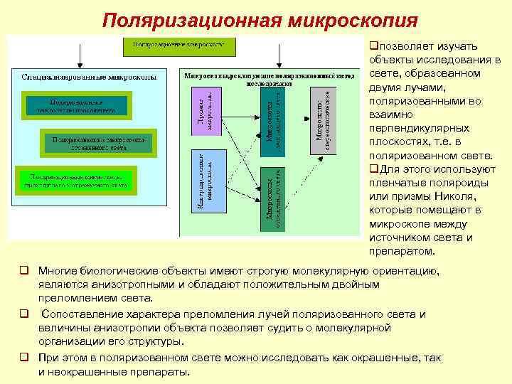 Поляризационная микроскопия     qпозволяет изучать