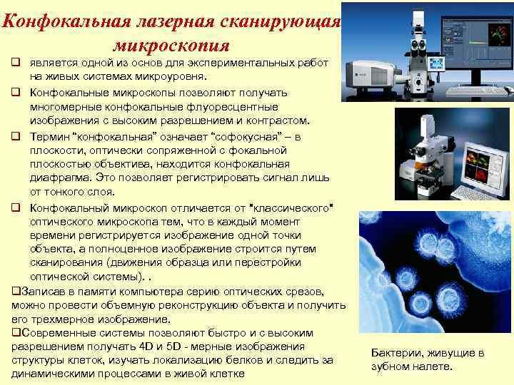 Конфокальная лазерная сканирующая  микроскопия q является одной из основ для экспериментальных работ на