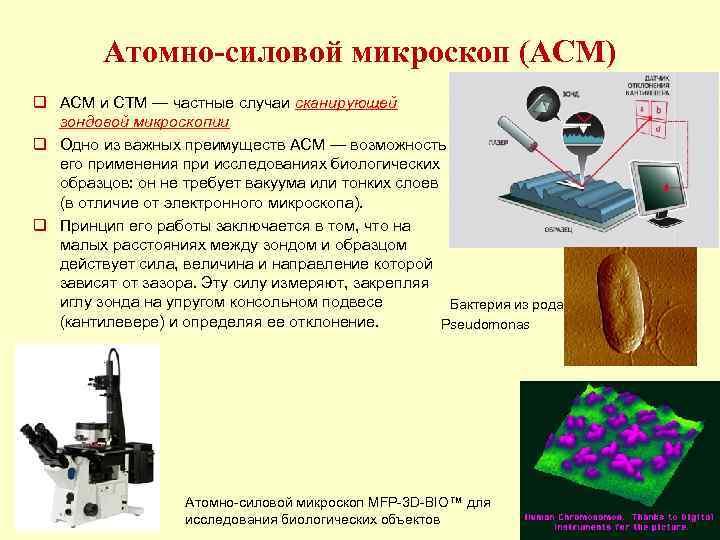 Атомно-силовой микроскоп (АСМ) q АСМ и СТМ — частные случаи сканирующей