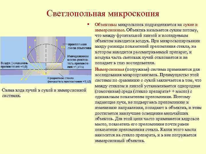 Светлопольная микроскопия    §  Объективы микроскопов подразделяются