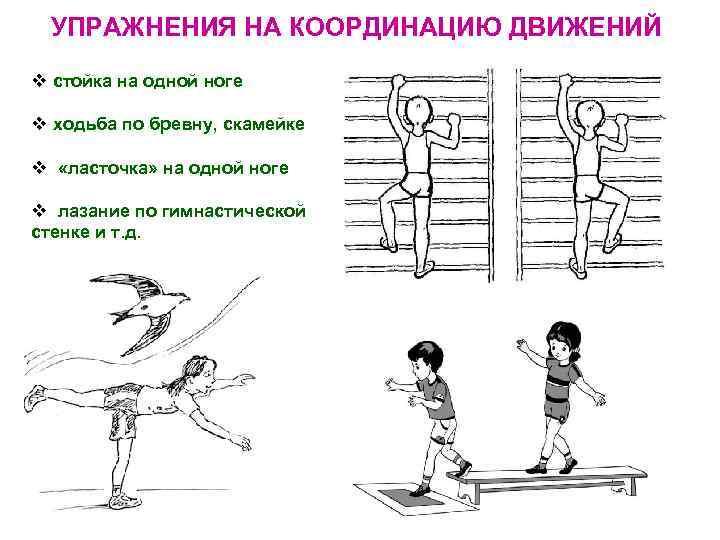 Упражнения на координацию движений с картинками
