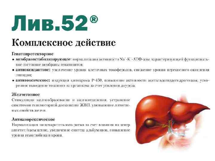 Буклет Лив. 52