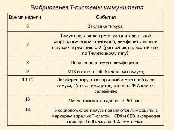Эмбриогенез Т-системы иммунитета Время, недели События 6 Закладка тимуса; 7 Тимус представлен ретикулоэпителиальной морфологической