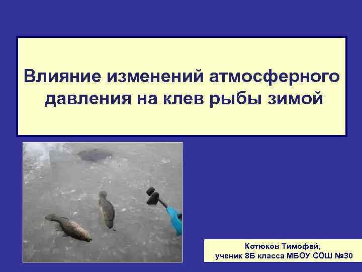 Влияние изменений атмосферного давления на клев рыбы зимой Котюков Тимофей, ученик 8 Б класса