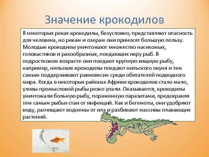 Значение крокодилов В некоторых реках крокодилы, безусловно, представляют опасность для человека, но рекам и