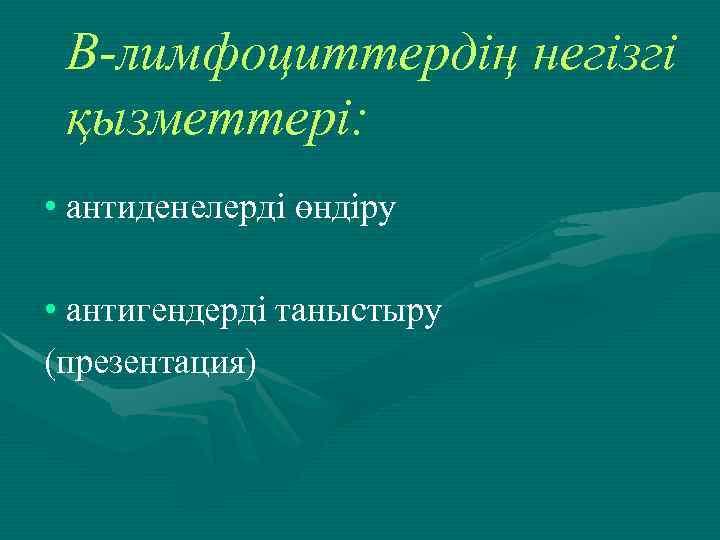 В-лимфоциттердің негізгі қызметтері: • антиденелерді өндіру • антигендерді таныстыру (презентация)
