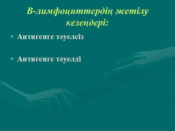 В-лимфоциттердің жетілу кезеңдері: • Антигенге тәуелсіз • Антигенге тәуелді