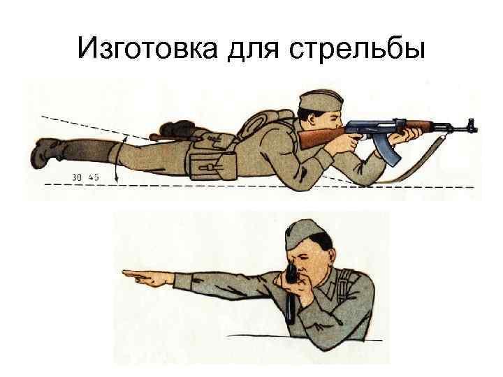 каждым годом правила стрельбы картинки статье