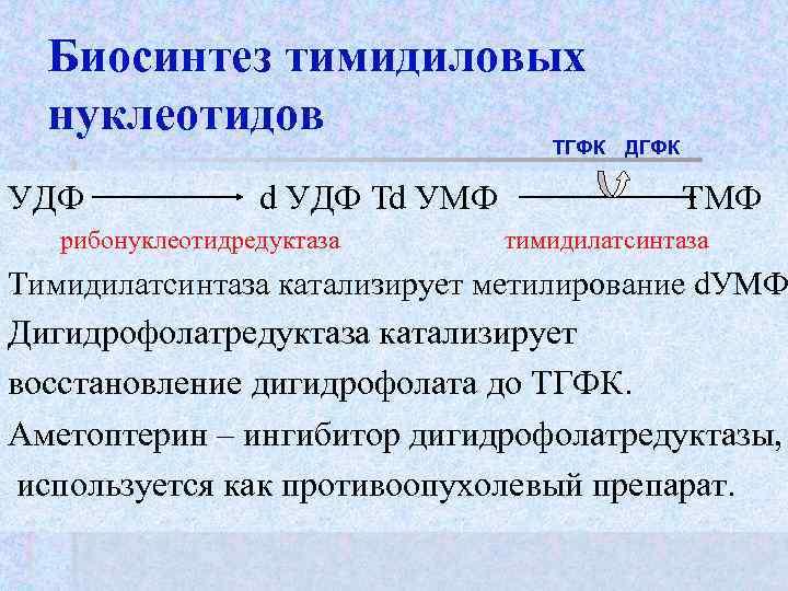 Биосинтез тимидиловых  нуклеотидов       ТГФК  ДГФК