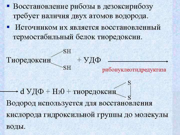 § Восстановление рибозы в дезоксирибозу  требует наличия двух атомов водорода. § Источником их