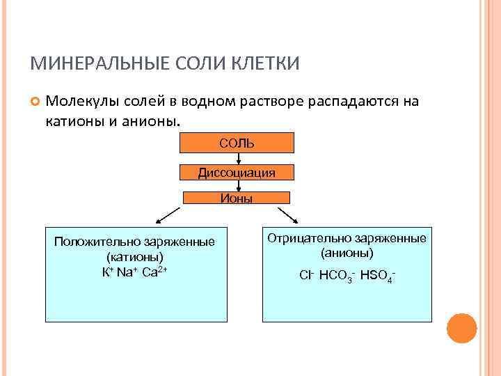 МИНЕРАЛЬНЫЕ СОЛИ КЛЕТКИ Молекулы солей в водном растворе распадаются на катионы и анионы.