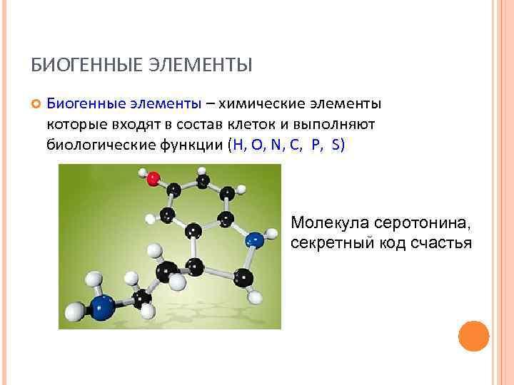 БИОГЕННЫЕ ЭЛЕМЕНТЫ Биогенные элементы – химические элементы которые входят в состав клеток и выполняют