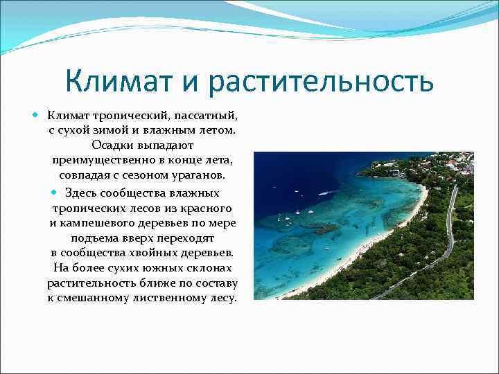 Климат и растительность  Климат тропический, пассатный, с сухой зимой и влажным летом.