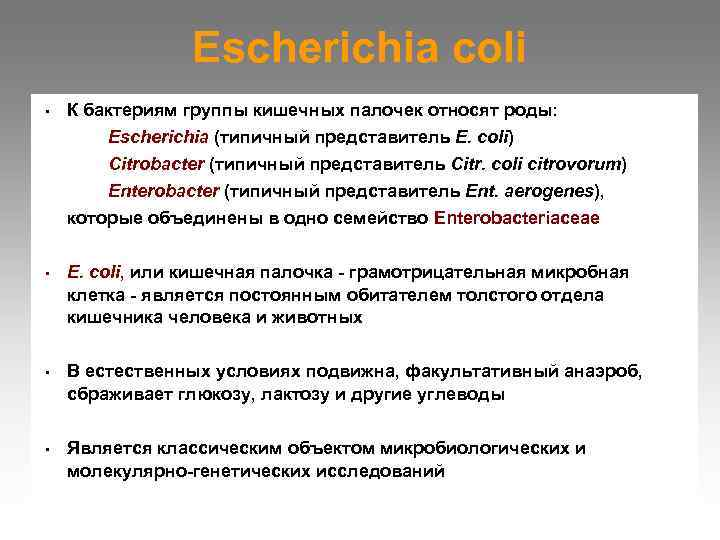 Escherichia coli •  К бактериям группы кишечных палочек относят роды: