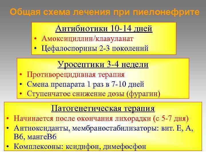 Общая схема лечения при пиелонефрите   Антибиотики 10 -14 дней   •