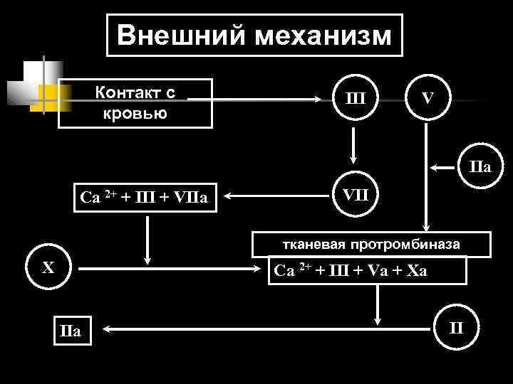 Внешний механизм  Контакт с   III  V  кровью