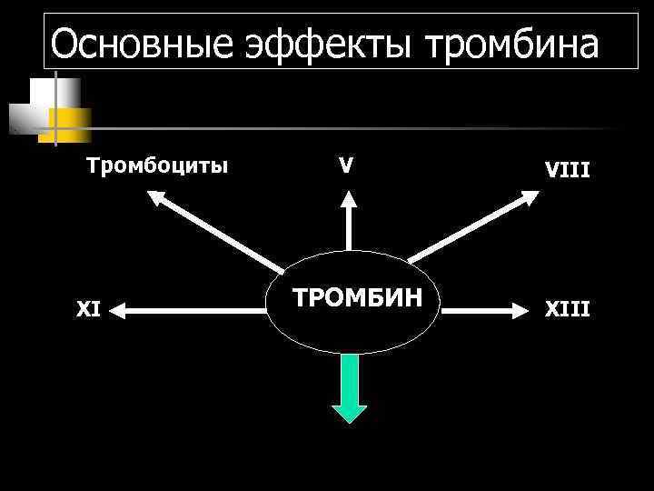 Основные эффекты тромбина  Тромбоциты V  VIII XI  ТРОМБИН  XIII