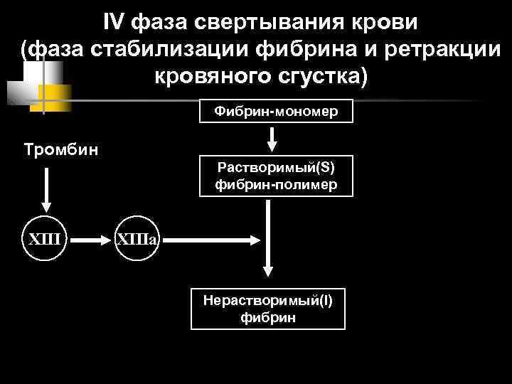 IV фаза свертывания крови (фаза стабилизации фибрина и ретракции  кровяного сгустка)